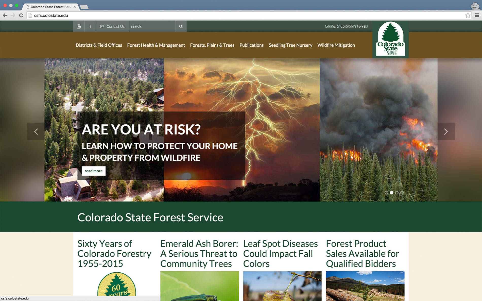 Colorado State Forest Service website screenshot